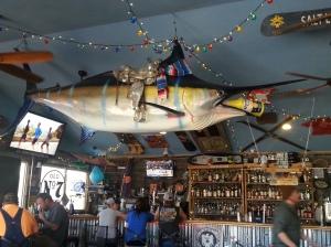 Swordfish in Utah